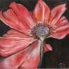 Poppy 07/5/2011 - Oil on Wood 4 7/16