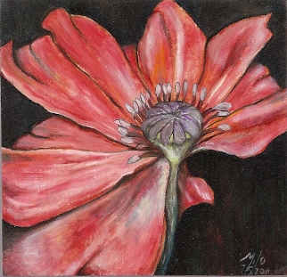 "Poppy 07/5/2011 - Oil on Wood 4 7/16""(w) x 4 5/16"" (h)"