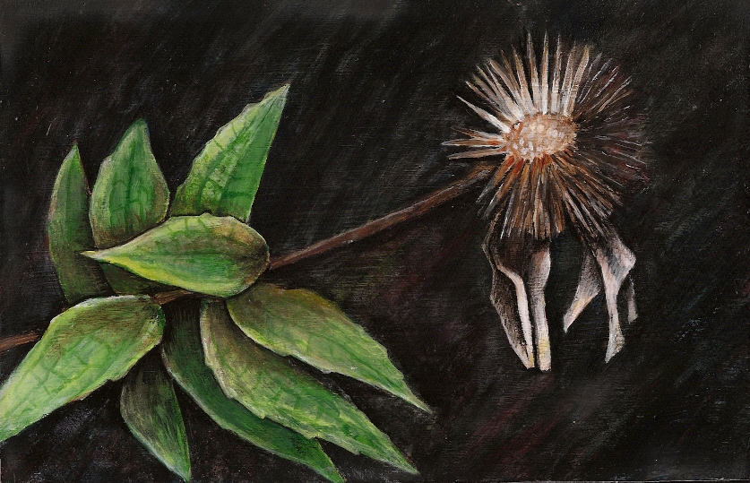 Autumn Echinacea (Acrylic on wood 8 7/16 x 5 1/2)